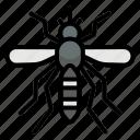 mosquito, insect, bug, malaria