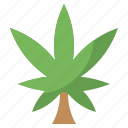 botanical, cannabis, cultures, drug, marijuana, unhealthy, weed
