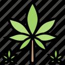 drug, foliage, fresh, hemp, leaf icon