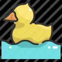 animal, animals, beak, bird, duck, ornithology