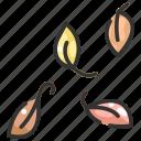 autumn, botanical, fall, garden, leaf, leaves, plant icon