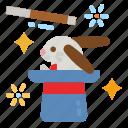 rabbit, magic, hat, trick, animal