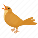 feather creature, fowl, sparrow, brown bird, common myna icon