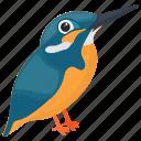 brazilian ruby, feather creature, hummingbird, small bird, sparrow icon