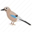 bird, feather creature, gauraiya bird, house sparrow, sparrow icon