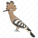 bird, egypt hud, feather creature, hoopoe bird, hudhud icon