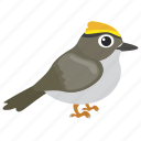 bird, feather creature, gauraiya bird, house sparrow, sparrow icon