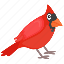 bird, cardinal bird, feather creature, northern cardinal, red bird icon