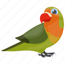 bird, feather creature, macaw, parrot, pet bird icon
