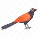 bird, eurasian bullfinch, eurasian finch, female bird, fringillidae icon