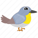 bird, feather creature, house sparrow, pet bird, sparrow icon