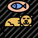 kitty, fish, dream, kitten, sleep, cat, pet