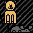 mouse, pussycat, kitty, kitten, domestic, cat, pet