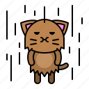 avatar, cat, kitten, rain, raining, wet icon