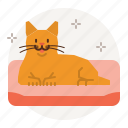 cat, care, bed, beds, sleep, sleeping icon