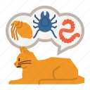 cat, care, flea, tick, infection, treatment