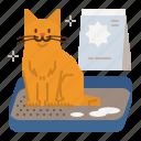 cat, care, litterbox, sandbox, toilet, potty