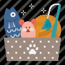 cat, care, toy, toys, box, plush