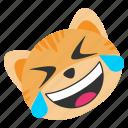 cat, emoji, funny, happy, joke, rolling, smile
