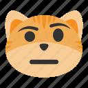 casual, cat, caucasian, emoji, expression, eyebrow, face