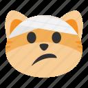 bandage, cat, emoji, face, head, injury, pain