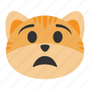 anguish, anxiety, cat, emoji, pain, scared, upset icon