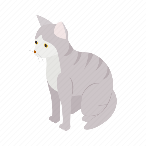 animal, blog, cat, gray, isometric, pet, tabby icon