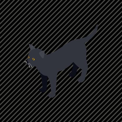 animal, blog, cat, isometric, kitten, pet, tail icon