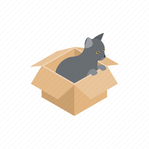 Animal, blog, box, isometric, kitten, pet, tail icon - Download on Iconfinder