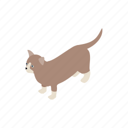 animal, blog, cat, isometric, kitten, munchkin, pet icon