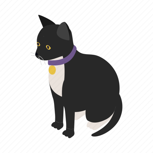 animal, blog, cat, collar, isometric, kitten, pet icon
