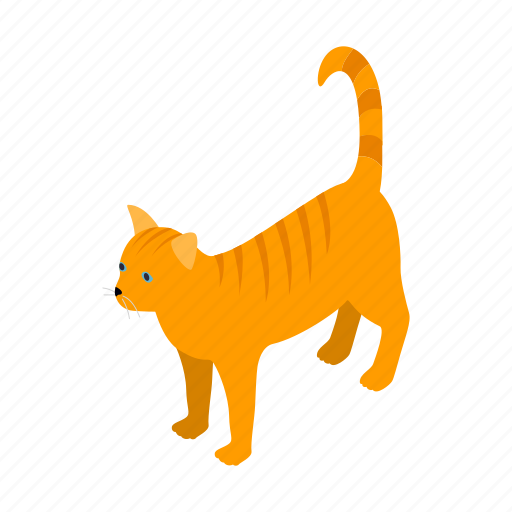 animal, blog, cat, isometric, orange, pet, tabby icon