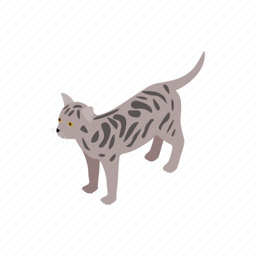 Animal, bengal, blog, cat, isometric, kitten, pet icon - Download on Iconfinder