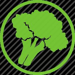 broccoli, eating, food, fresh, healthy, vegetable, vegetarian icon