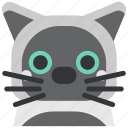 animal, avatar, cat, cute, face, pet, pussy icon