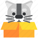 animal, box, cat, game, package, pet, present icon