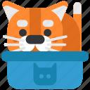 animal, box, cat, pet, pussy, toilet, wc icon