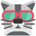 animal, cat, cool, eyeglasses, glasses, pet, pussy icon