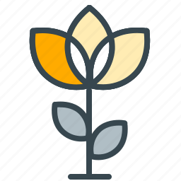celebration, ecology, floral, flower, garden, nature icon