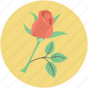 blossom, flower, love symbol, red rose, rose, rosebud icon
