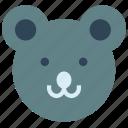 animal, avatar, bear icon