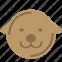 animal, avatar, dog, goldretriever icon