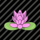cartoon, floral, flower, lotus, nature, petal, plant