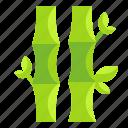 bamboo, botanical, china, chinese, garden, nature, plant icon