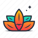 chinese, floral, flower, leaf, lotus, nature, plant