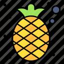 pineapple, diet, food, fruit, healthy