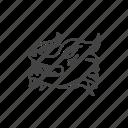 dragon, monster, creature, animal