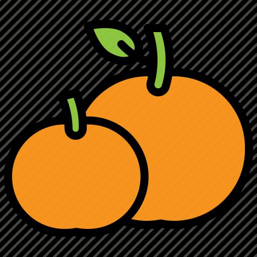 china, food, fruit, orange, tangerine icon