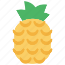 chinese, newyear, pineapple icon