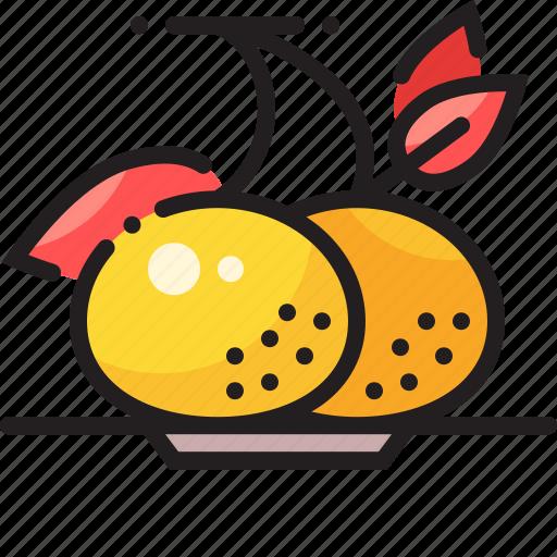 chinese, fruit, orange icon